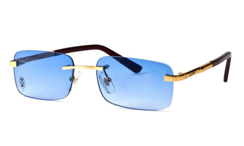 Wholesale Cheap Replica Cartier Metal Memory Plastic Glasses Frames For Sale-040