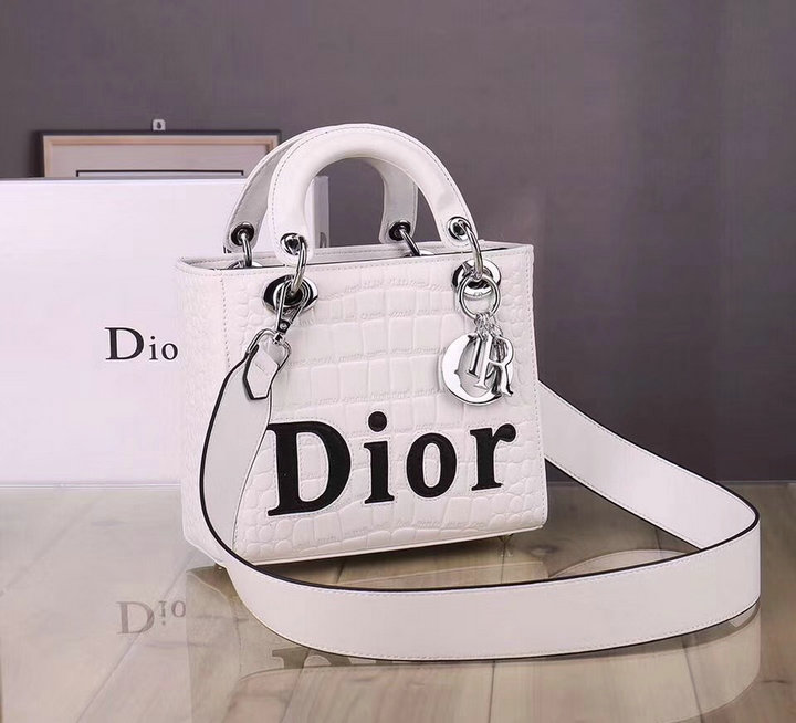 Wholesale New Christian Dior Handbags for Cheap-111