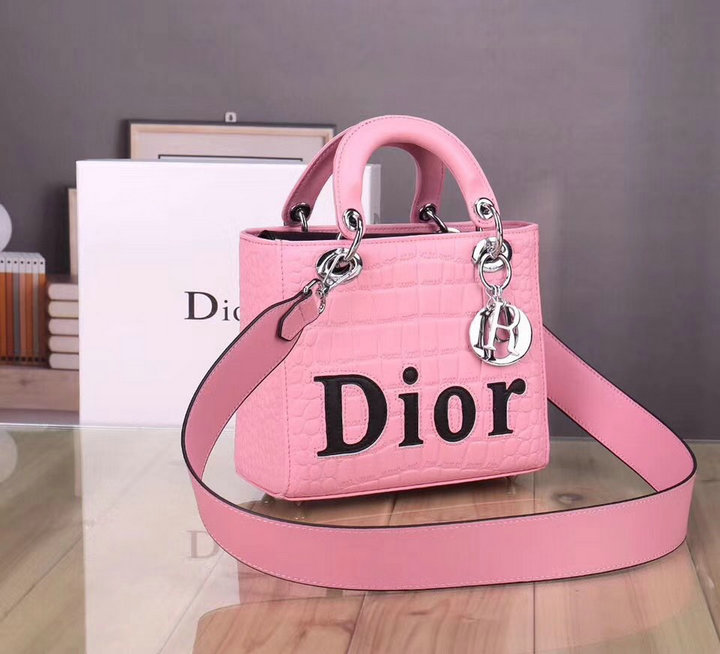 Wholesale New Christian Dior Handbags for Cheap-112