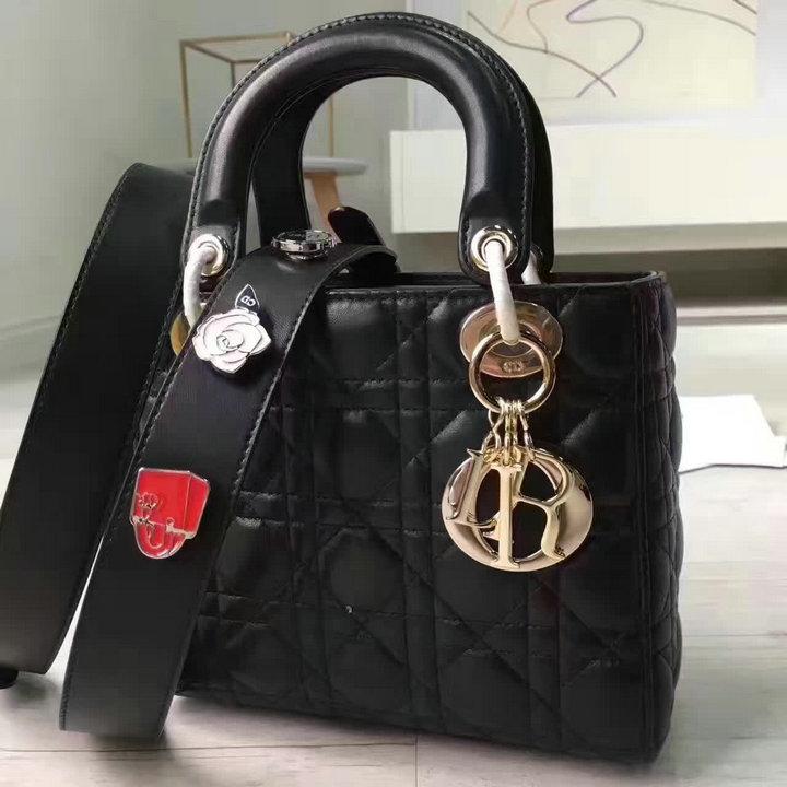 Wholesale New Christian Dior Handbags for Cheap-114